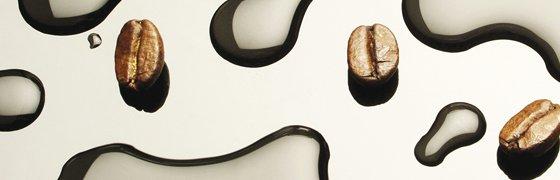 Kaffeebohnen und Wasser wichtige Faktoren für die Qualität