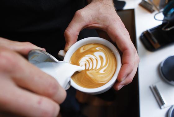 Bezzera-BZ13-DE-PID-Latte-Art