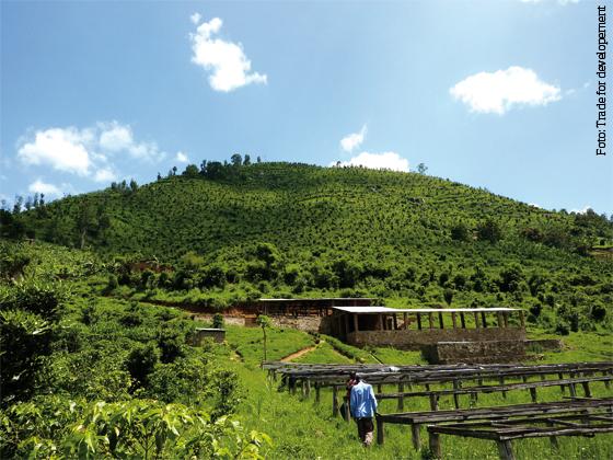 Von-den-grünen-Hügeln-Afrikas
