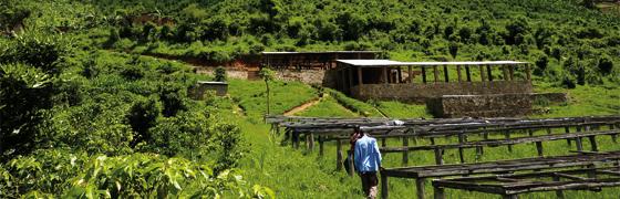 Von-den-grünen-Hügeln-Afrikas-Aufmacher