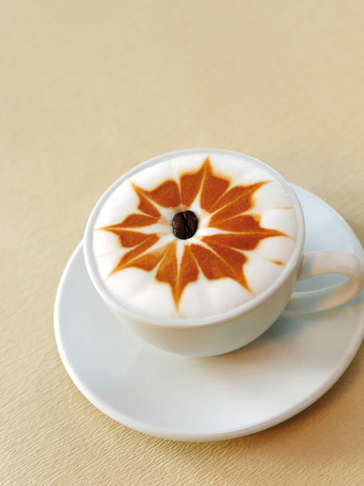 Kaffeeblume-ganz